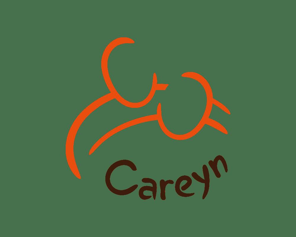Careyn: visual storytelling